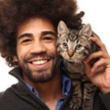 CO2 Laser for Cat Owners