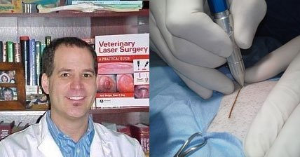 CO<sub>2</sub> Lasers Useful Everyday for Every Surgeon