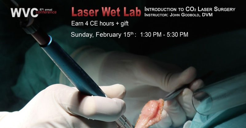 """Introduction To CO2 Laser Surgery"" by Dr. John Godbold"