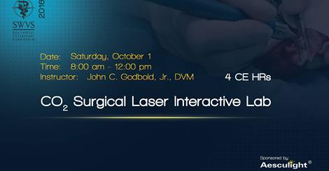 co2 surgical laser%e2%80%ac interactive lab swvs