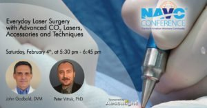 navc 2017 vet laser surgery session