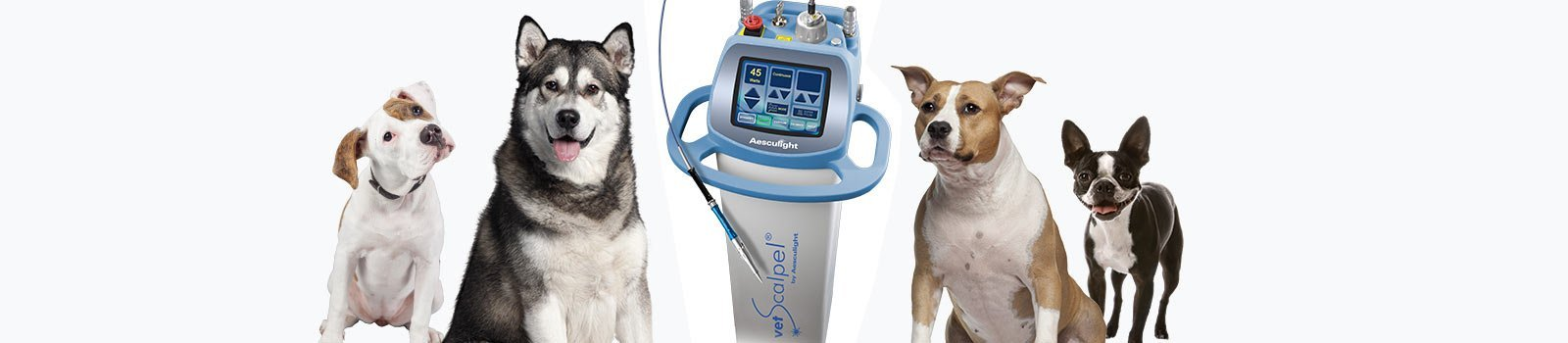 What Dog Owners Say About Aesculight Veterinary Laser Surgery