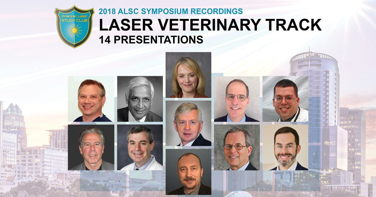 veterinary laser surgery presentations