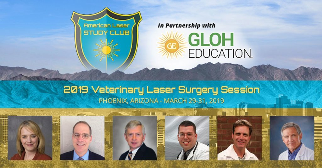 Veterinary Laser Surgery Symposium 2019