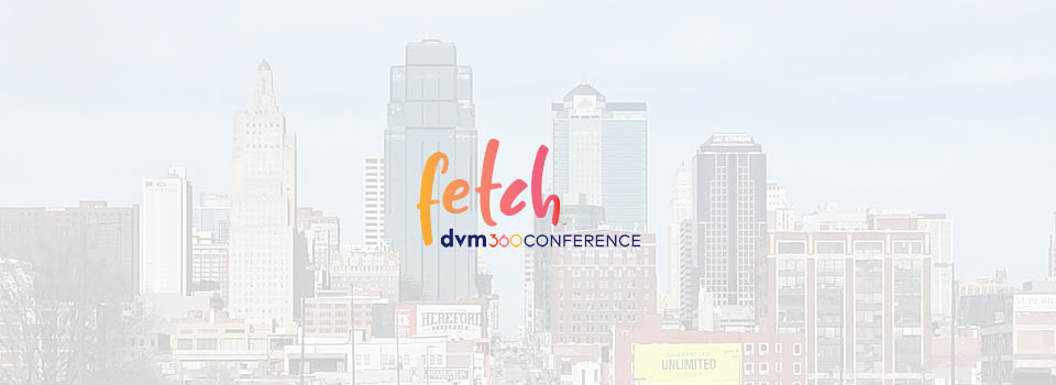 fetch 2019 kansas city