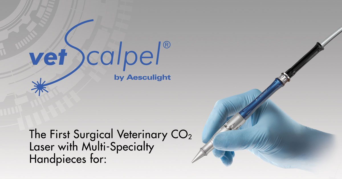 veterinary special handpieces