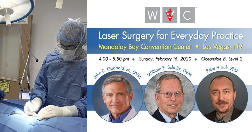 Laser Surgery for Everyday Practice - WVC 2020