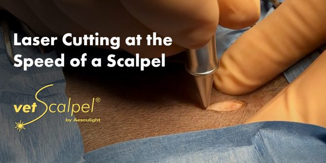 veterinary laser speed of a scalpel
