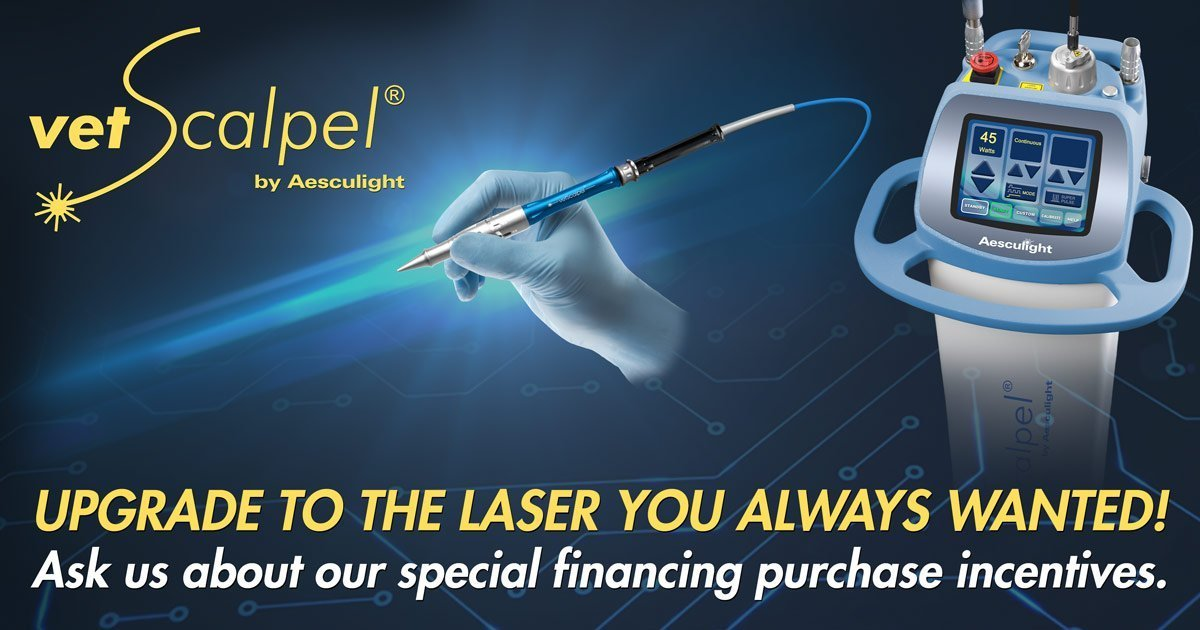 special financing incentives