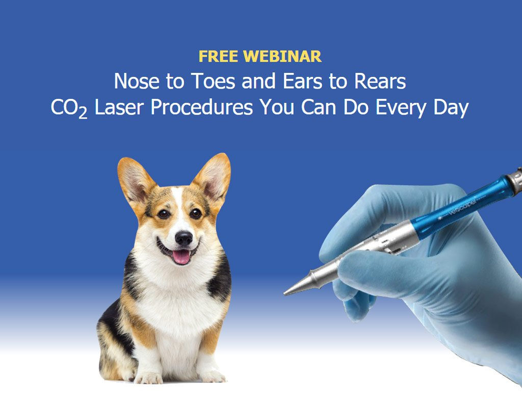 Nose to Toes and Ears to Rears CO2 Laser Procedures You Can Do Every Day